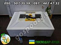 Инкубатор бытовой Теплуша на 80 яиц с тэновым нагревом