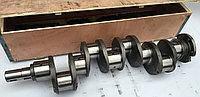 Вал коленчатый - коленвал Д-245, МТЗ, ПАЗ, Валдай 245-1005015-А  , фото 1