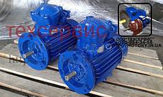 Электродвигатель взрывозащищенный АИММ112МА8 3/1000