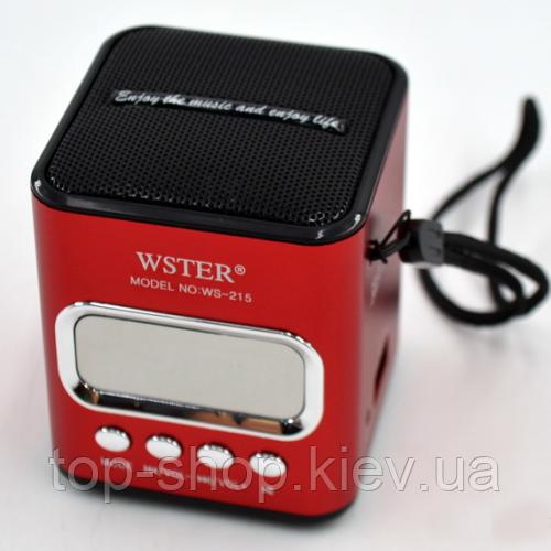 Портативная колонка с USB, CardReader и FM WSTER WS-215