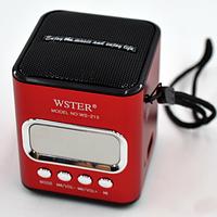 Портативная колонка с USB, CardReader и FM WSTER WS-215, фото 1