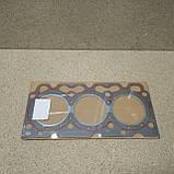 04170572 прокладка головки блока (1 метка), фото 2