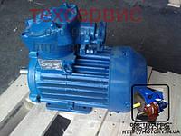 Электродвигатель взрывозащищенный АИММ100S4 3/1500, фото 1