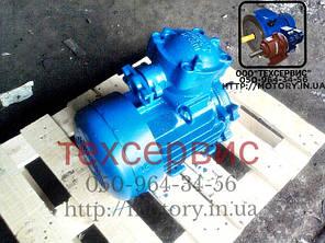 Электродвигатель взрывозащищенный АИММ100S4 3/1500, фото 2