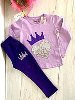 Набор для девочки реглан и спортивные штаны Корона