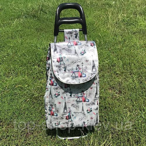 Тачка сумка с колесиками кравчучка Париж