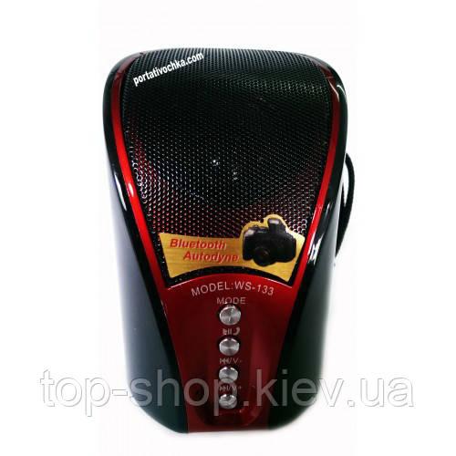 Портативная колонка Bluetooth Speaker WS-133