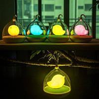 Ночник детский birdcage lamp LED Night Lamp Mini, фото 1