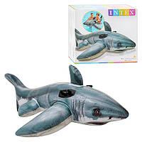 Плотик 57525 INTEX акула, 173-107см, ручки 2шт, рем компл, в кор-ке, 22,5-20,5-7см