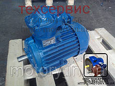 Электродвигатель взрывозащищенный АИММ132М2 11/3000