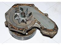 Помпа системы охлаждения 1.9 для Renault Scenic RX4 2000-2003 8200102286
