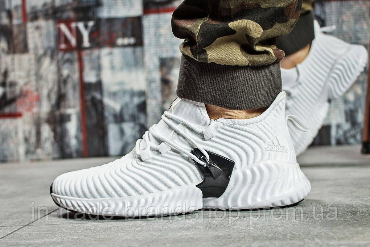 Кроссовки мужские Adidas AlphaBounce Instinct, белые (15663) размеры в наличии ► [  43 (последняя пара)  ]