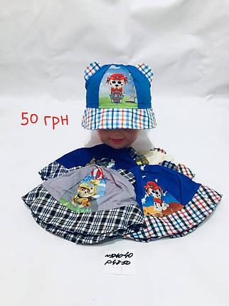 Детская кепка для мальчика Dog,р.48-50,коттон, фото 2