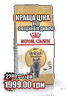 Сухой корм для британцев Royal Canin British Shorthair Adult 10кг