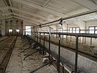 Молокопровод «Брацлавчанка» 200 голов, н/ж, попарное доение, полный комплект, фото 1