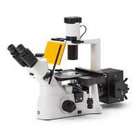 Микроскоп инвертированный Euromex IN.2003(Голландия)