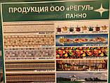 Панно «Суздальский кремль» Арт.№пнС-2 4620772254461, фото 4