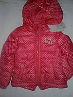 Курточка демисезонная теплая  для девочек на 2 года