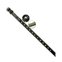 Ошейник 20 мм кожаный украшенный с подкладкой ХБ