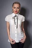 Однотонная женская блуза с коротким рукавом и воротником