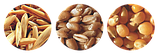 """Пророслі зерна злаків компанія """"Добра Їжа"""" 150 г, фото 3"""