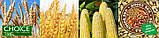 """Пророслі зерна злаків компанія """"Добра Їжа"""" 150 г, фото 4"""