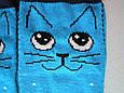 Носки Детские котики  синие размер 23-26 на 3-5 лет, фото 3