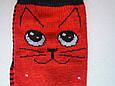 Носки Детские котики  красные размер 23-26 на 3-5 лет, фото 3