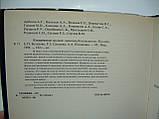 Космическое оружие. Дилемма безопасности (б/у)., фото 9