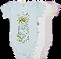 Детский боди-футболка, однотонная с принтом, тонкий хлопок, ТМ Garden Baby, р.: 62-68, Украина