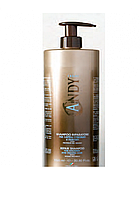 Andy Shampoo Riparatore 1000 ml Tapp - Шампунь для окрашенных волос, 1000мл