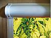 Ролеты тканевые (рулонные шторы) Leaves Besta uni закрытый короб