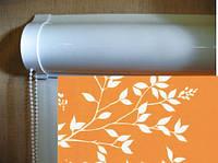 Ролеты тканевые (рулонные шторы) Park Besta uni закрытый короб, фото 1
