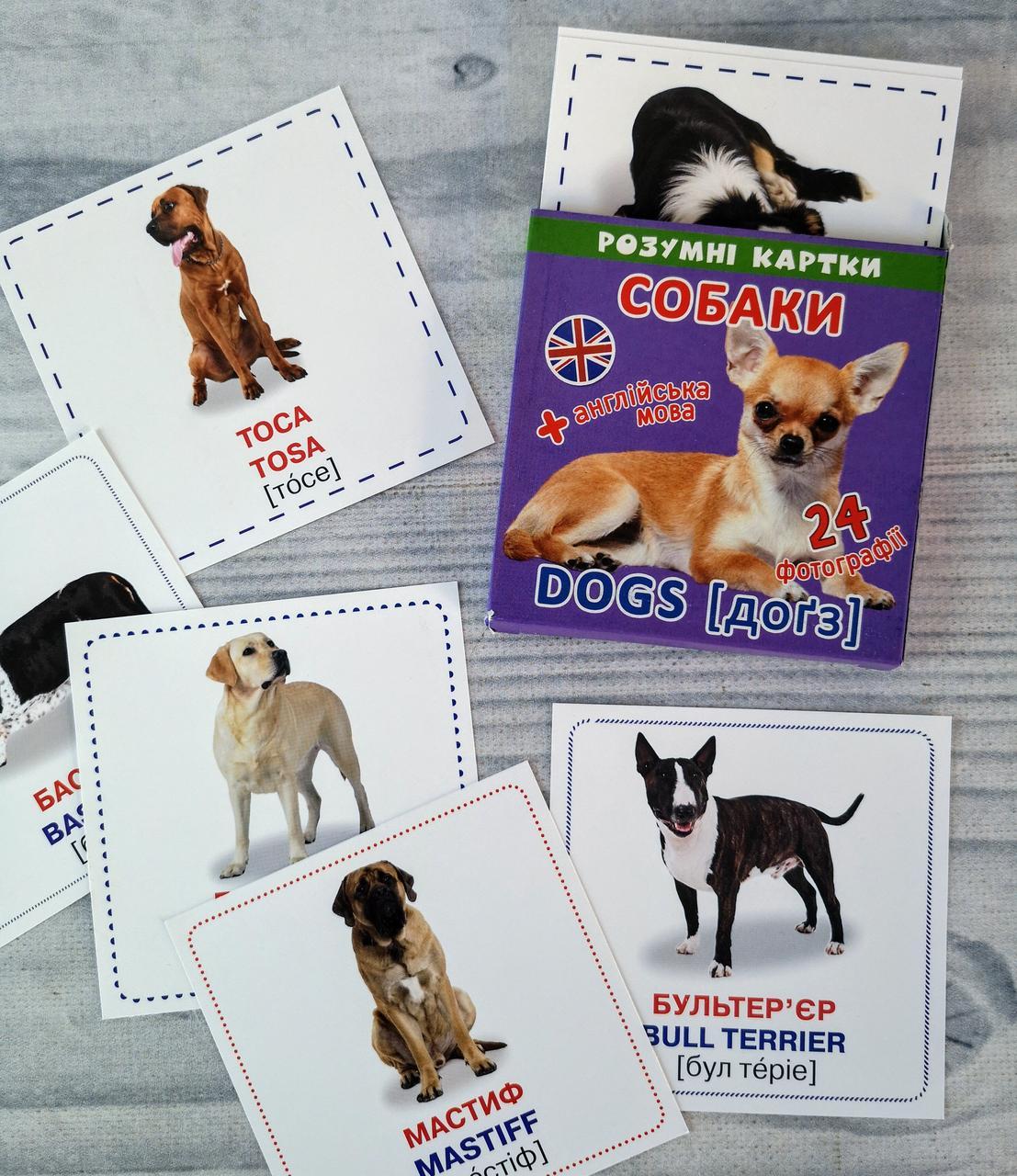 Развивающие карточки Вундеркинд: Розумні картки. Собаки 105383 БАО Украина