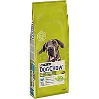 Purina Dog Chow Large Breed 14кг с индейкой для собак крупных пород от 2 до 9 лет