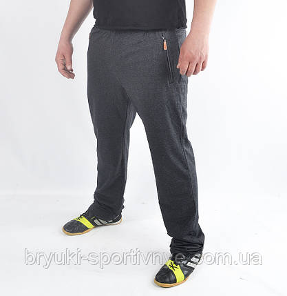 Спортивные штаны мужские трикотажные, фото 2