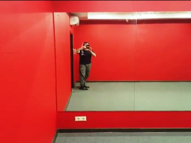 Зеркала в спортзал в прирезке