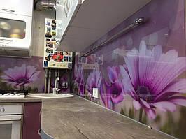 Скинали - цветы фиолетовой диморфотеки - доставка и монтаж в Днепре 1