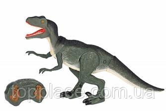 Динозавр на радиоуправлении Same Toy Dinosaur Planet  со светом и звуком Велоцираптор (RM101001135)