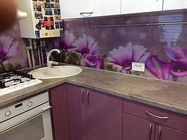 Скинали - цветы фиолетовой диморфотеки - доставка и монтаж в Днепре 4