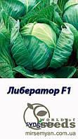Либератор F1 2500с. семена капусты б/к поздней 120-125 дн. 3-5 кг (Syngenta)