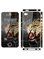Наклейка на айфон 4 / 5  Леопард