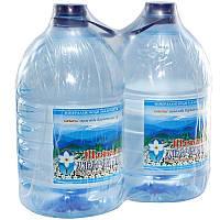 """Упаковка """"Шаянская родниковая"""" вода минеральная негазированная 5лx2 ПЭТ"""