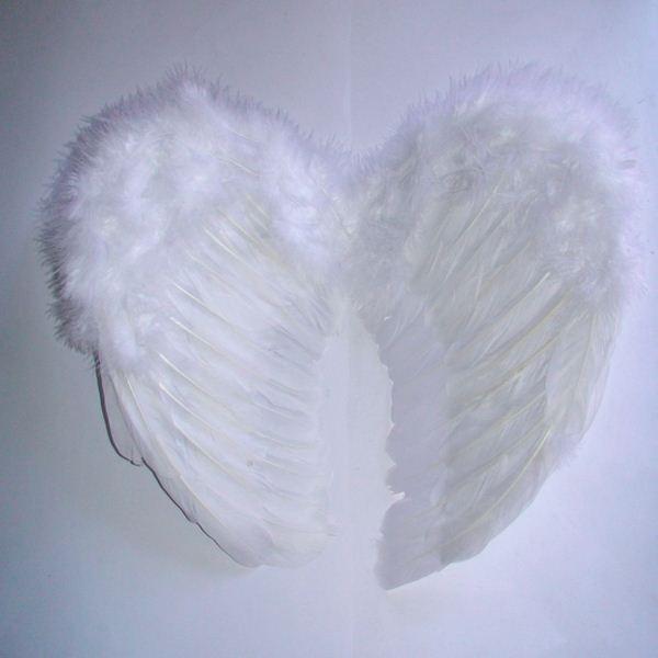 Крылья ангела, 30х40 см