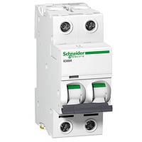 Автоматический выключатель iC60N 2P 2A D Schneider Electric (A9F75202), фото 1