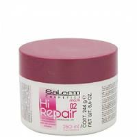 Salerm Mask Hi-Repair Маска для восстановления структуры волос, 250 мл