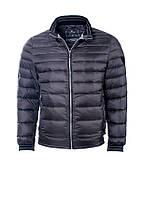 Куртка-пуховик мужская короткая под резинку Pierre Cardin оригинал