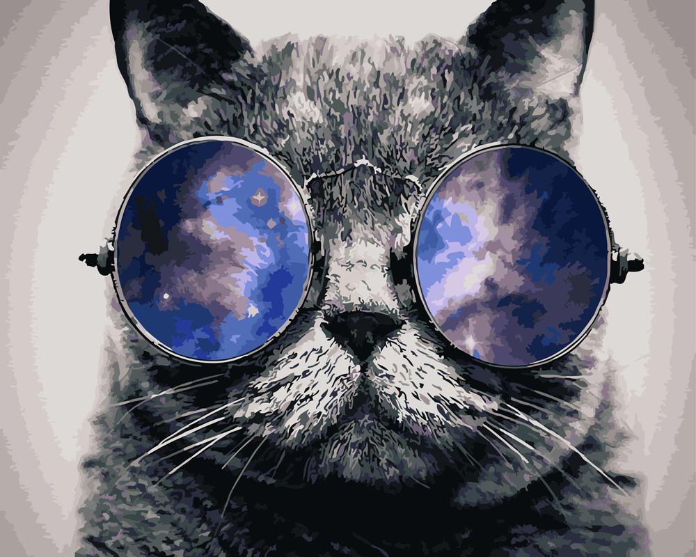 Картина по номерам Кот в очках, 40x50 см., Rainbow art