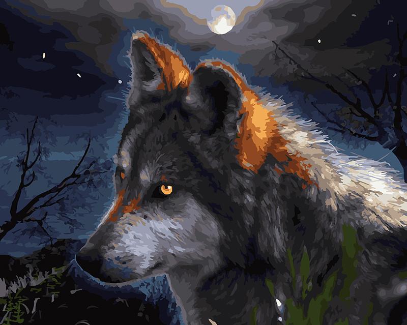 Картина по номерам Ночной охотник, 40x50 см., Rainbow art