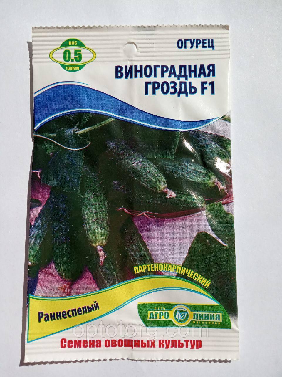 Насіння огірків Виноградна гроно F1 0.5 гр